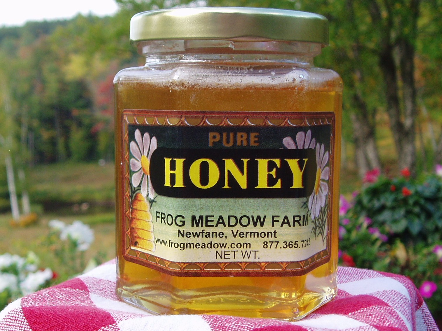 Frog Meadow Raw Honey