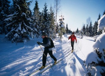 Ski Areas: Cross-Country/Nordic