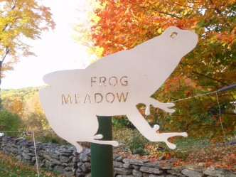Welcome to Frog Meadow!