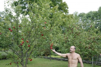 Scott inspects the apples in late summer Frog Meadow New England's Best All Male Gay Resort in Southern Vermont