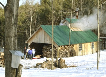 Maple Sugaring is a seasonal epicurean delight, an outdoor celebration to savor, and a time-honored Vermont tradition!