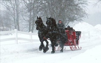 Sleigh Rides Frog Meadow New England's Best All Male Gay Resort in Southern Vermont
