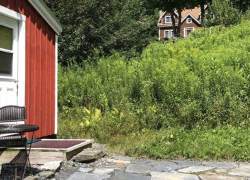 The Bee Cottage (seasonal)